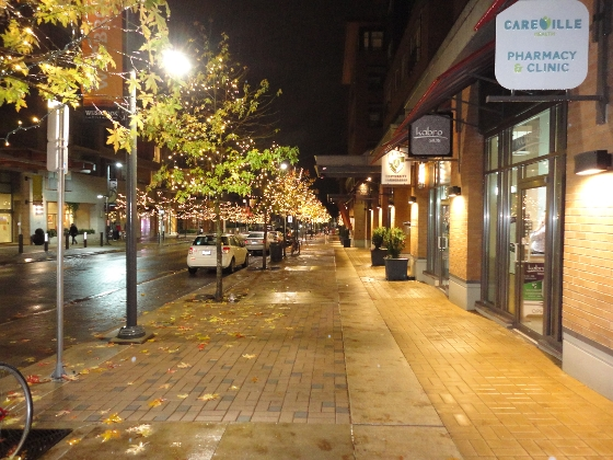 Wesbrook Village Christmas 2013 sidewalk lights